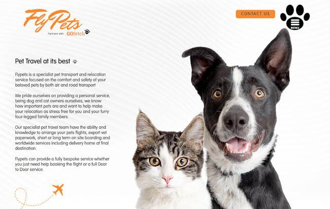 pet-transport-website-design-cropped.jpg