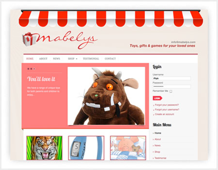 toy shop web design in Cardiff